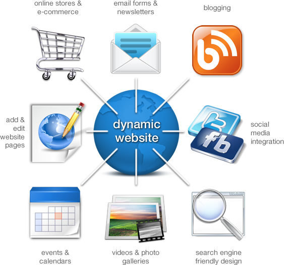 dynamicwebsite2